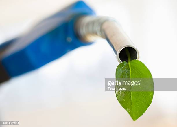 Fuel nozzle with green leaf