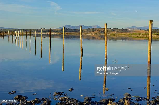 Fuente de Piedra Lagoon M‡laga province Andalusia Spain