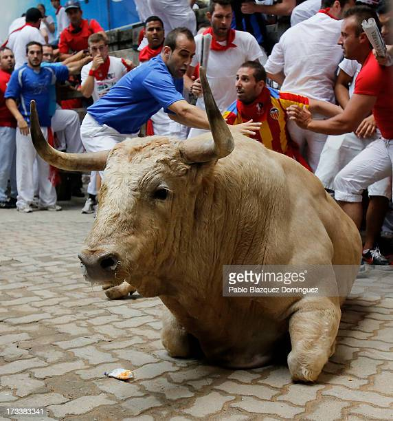 Fuente Ymbro's fighting bull falls entering the bullring during the eighth day of the San Fermin Running Of The Bulls festival on July 13 2013 in...