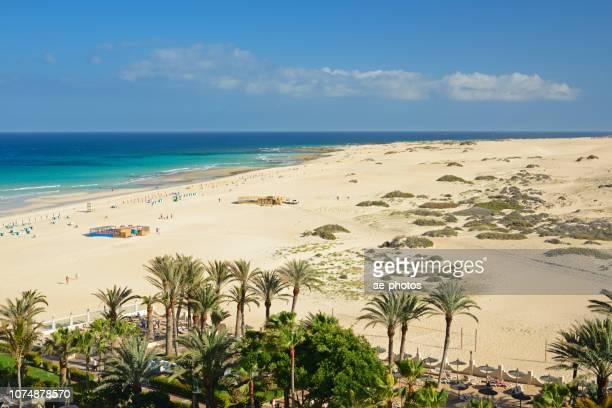 Fuerteventura, sand beach in Corralejo