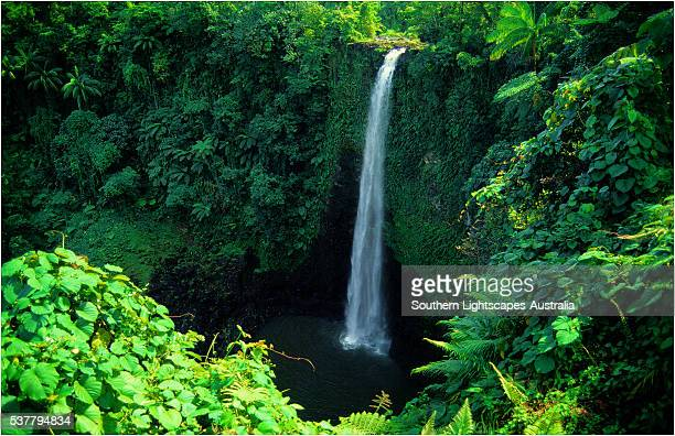 fuipusia waterfall, the island of upolu, western samoa. - samoa stock pictures, royalty-free photos & images