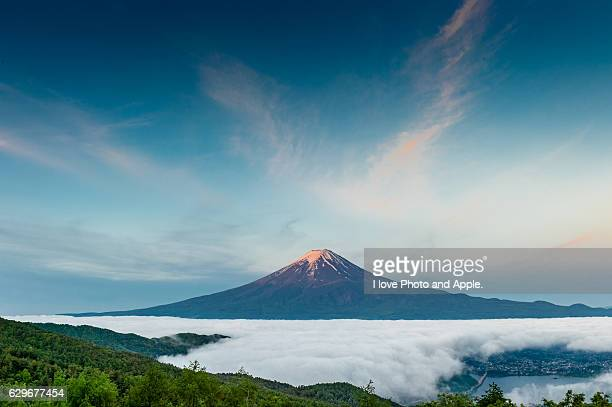 Fuji above the sea of cloud