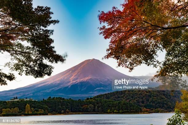 fuji and autumn leaves - fuji hakone izu national park stock photos and pictures