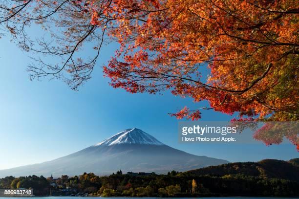 fuji and colour leaves - fuji hakone izu national park stock photos and pictures