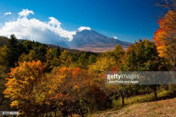 fuji autumn scenery - novembro azul - fotografias e filmes do acervo