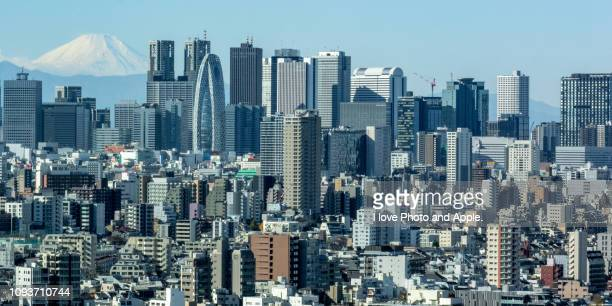 fuji distant view from tokyo in the morning - 東京都庁舎 ストックフォトと画像