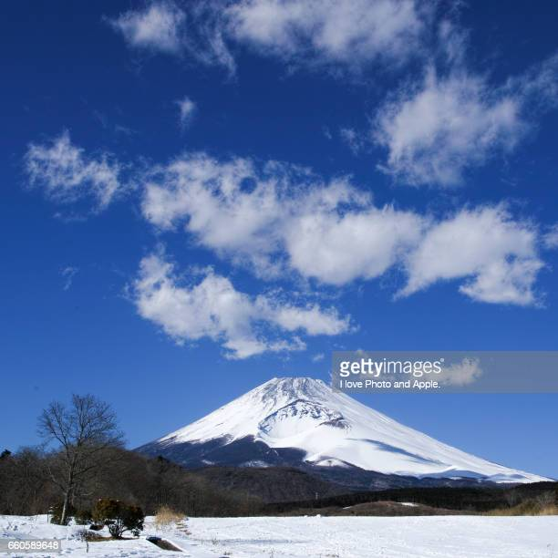 fuji from the snowfield - 一月 stock pictures, royalty-free photos & images