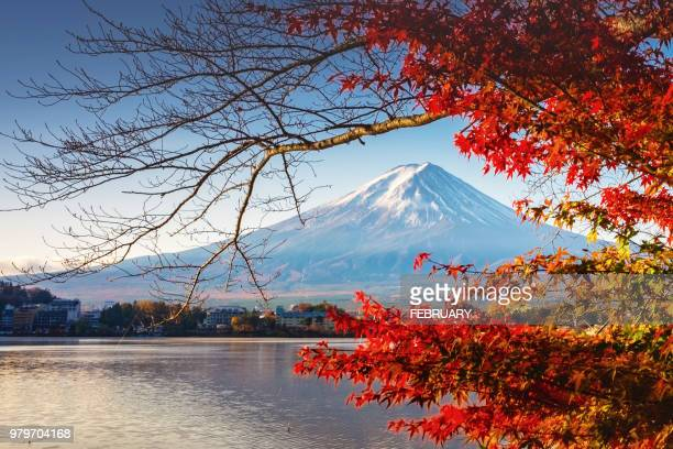 fuji in autumn - shizuoka stock photos and pictures