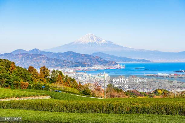fuji mountain and green tea plantation at nihondaira with view of shimizu port background, shizuoka, japan - 静岡市 ストックフォトと画像