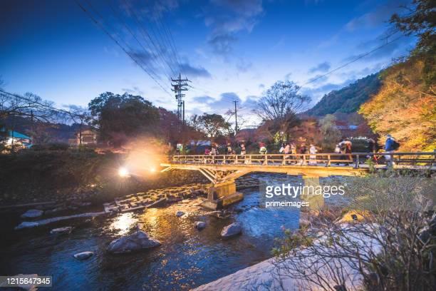 朝の富士山と河口湖、日本の山内町の秋季富士山。 - 静岡市 ストックフォトと画像