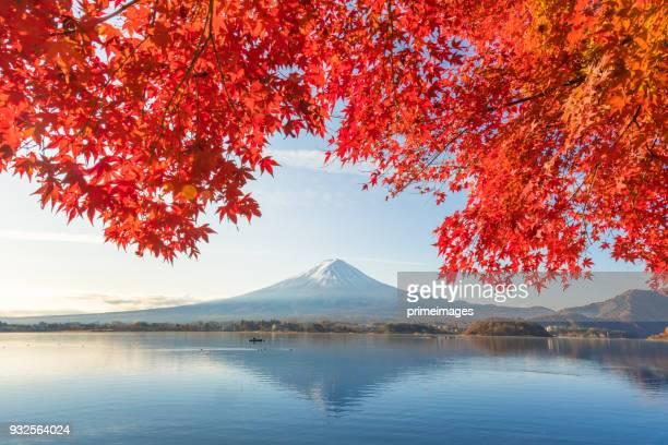 mont fuji et le lac kawaguchiko matin, automne saisons fuji mountain à yamanachi au japon. - japon photos et images de collection