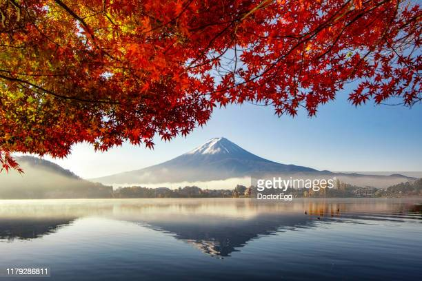 fuji mountain and morning mist with red maple tree in autumn at kawaguchiko lake, yamanashi, japan - japan stock pictures, royalty-free photos & images
