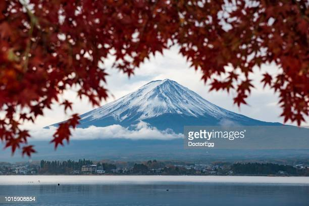 Fuji Mountain and Red Maple Leaves in Cloudy Autumn Day, Kawaguchiko Lake, Japan