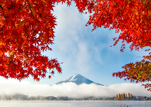 Fuji Mountain and Red Maple Leaves with Morning Mist at Kawaguchiko Lake in Autumn - gettyimageskorea