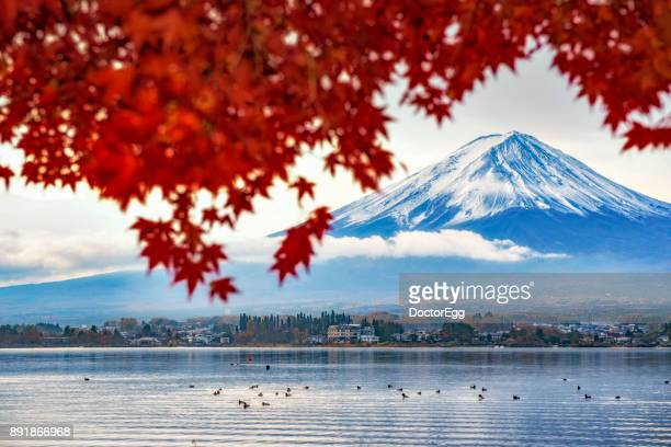 Fuji Mountain and Red Maple Tree with Morning Fog at Kawaguchiko Lake in Autumn