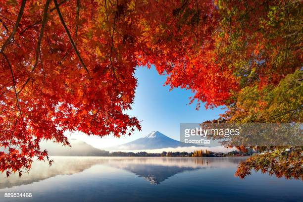 Fuji Mountain and Red Maple Tree with morning mist at Kawaguchiko Lake in Autumn