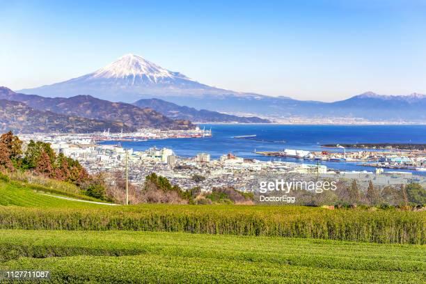 Fuji Mountain and Tea Plantation with Shimizu Port Background, Shizuoka, Japan