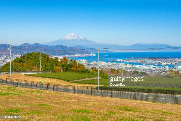 fuji mountain and tea plantation with shimizu town in blue sky day at nihondaira, shizoka, japan - 静岡県 ストックフォトと画像