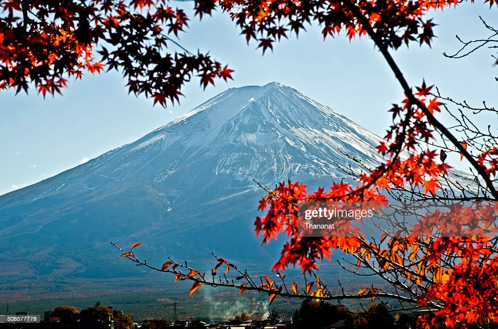 Fuji Mountain in Autumn. : Bildbanksbilder
