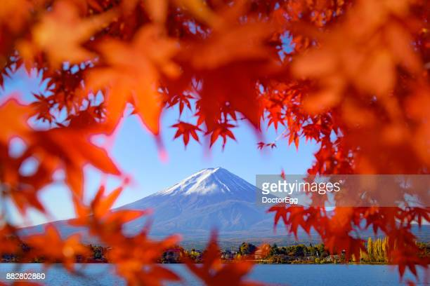 Fuji Mountain in Red Maple Heart Frame with Blue Sky at Kawaguchiko Lake in Autumn