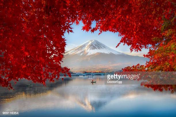 Fuji Mountain Reflection and Fisherman Boat with Red Maple Leaves in Autumn Blue Sky Sunny Day at Kawaguchiko  lake