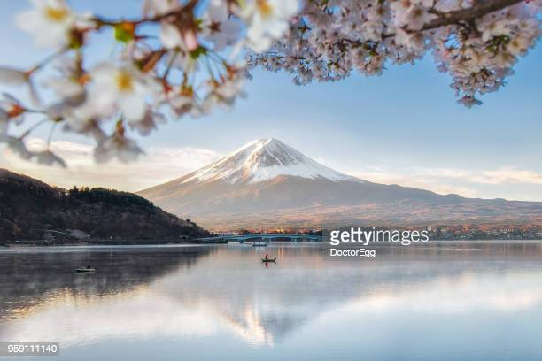 Fuji Mountain Reflection and Fisherman Boat with Sakura in Spring Blue Sky Sunny Day at Kawaguchiko  lake