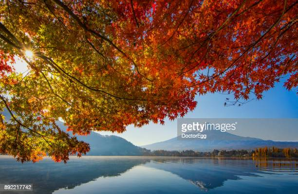 Fuji Mountain Reflection and Red Maple Branches with morning mist at Kawaguchiko Lake in Autumn