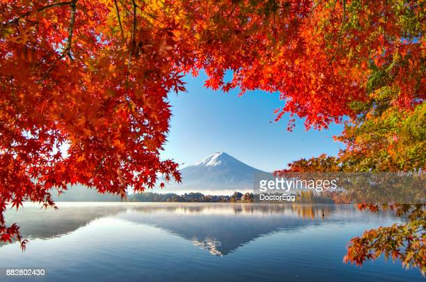 Fuji Mountain Reflection and Red Maple Trees with Morning Mist at Kawaguchiko lake in Autumn