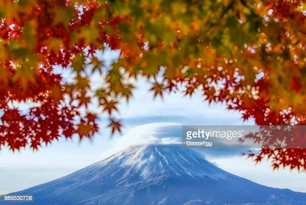 fuji moutain with maple branches and lenticular cloud on top at Kawaguchiko lake in Autumn