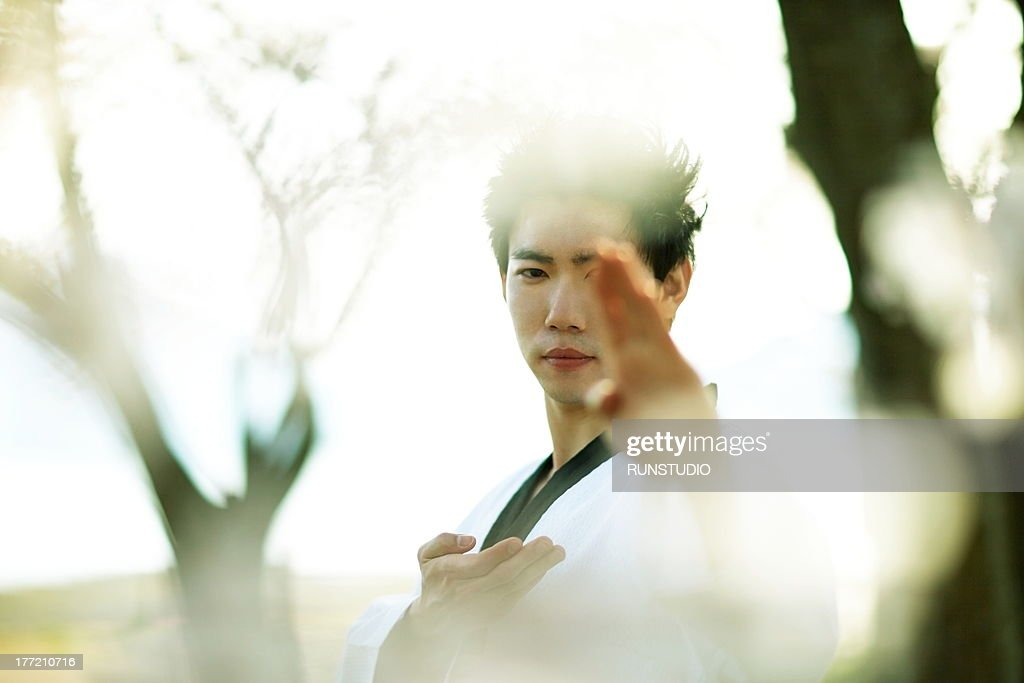 fuji mt sports(  taekwondo    ) : Stock Photo