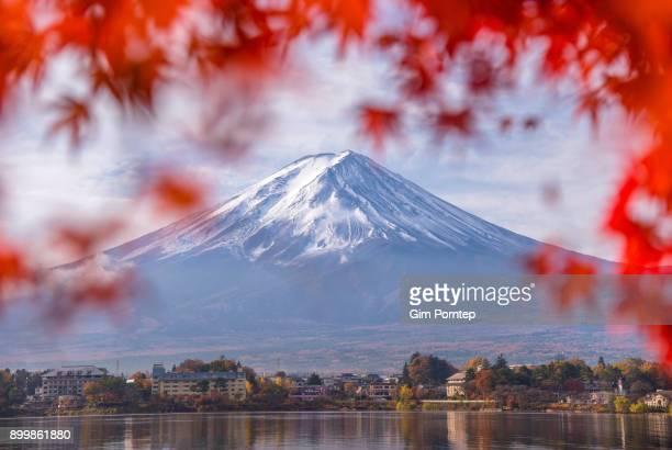 Fuji red frame