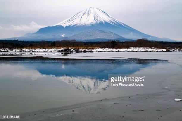 Fuji view at Lake Shoji