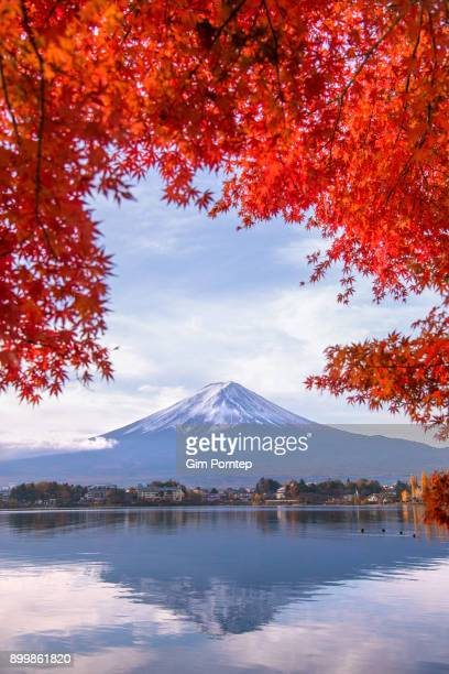 Fuji with red maple leaves