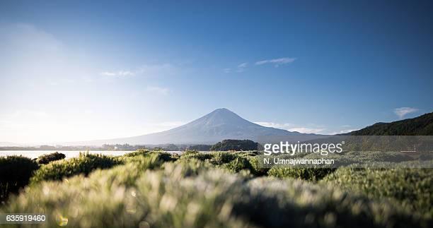 Fuji-san from Kawaguchiko lake in the morning