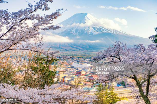 Fujiyoshida Town and Sakura Branches with Fuji Mountain Background