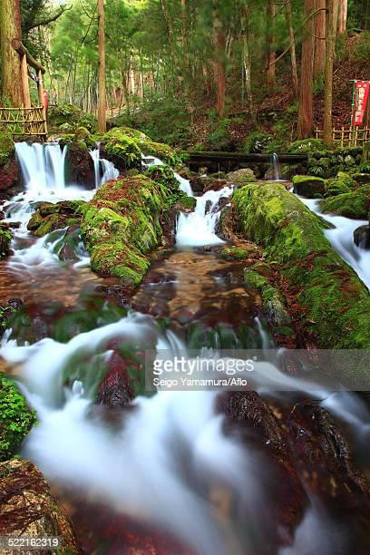 fukui prefecture, japan - hokuriku region stock photos and pictures