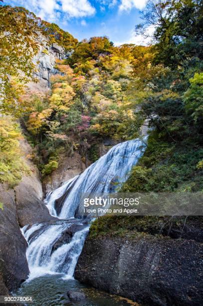 fukuroda falls colour leaves - 茨城県 ストックフォトと画像