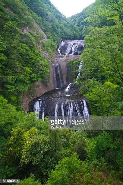 Fukuroda Falls in May
