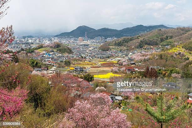 Fukushima Japan in Spring