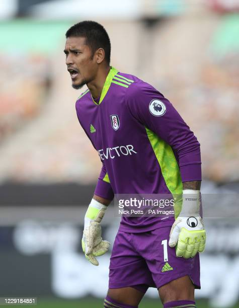 Goalkeeper Alphonse Areola Photos and Premium High Res Pictures ...