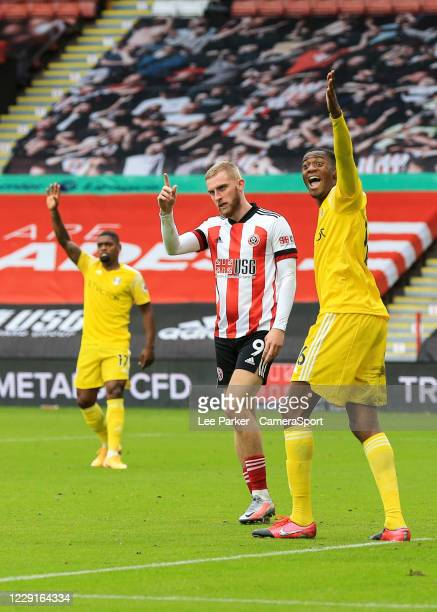 Fulham's Tosin Adarabioyo and Sheffield United's Oliver McBurnie appeal to the Assistant Referee during the Premier League match between Sheffield...