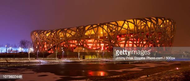 full birdnest by night - stadio olimpico nazionale foto e immagini stock