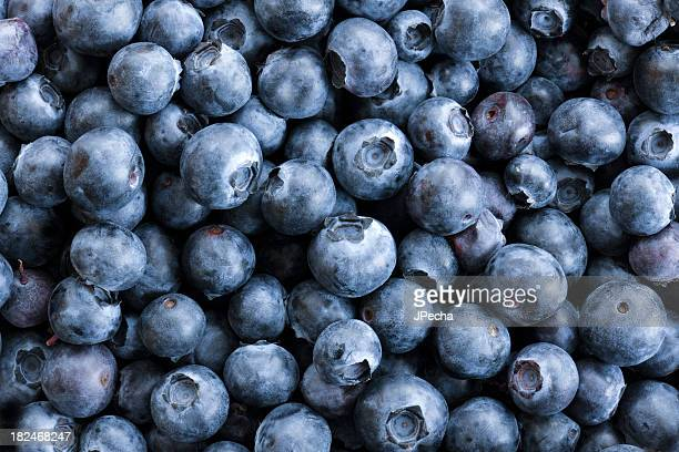 Full frame Close up Background Blueberries, Large Group of Objects