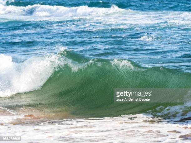 Full frame crest of a wave of sea with white foam of the sunny beach.