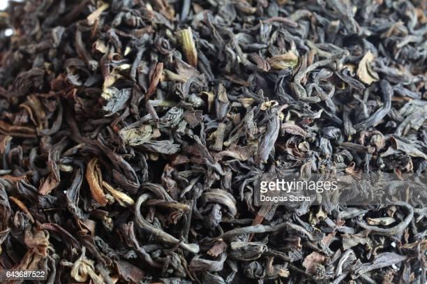Full frame Darjeeling Tea