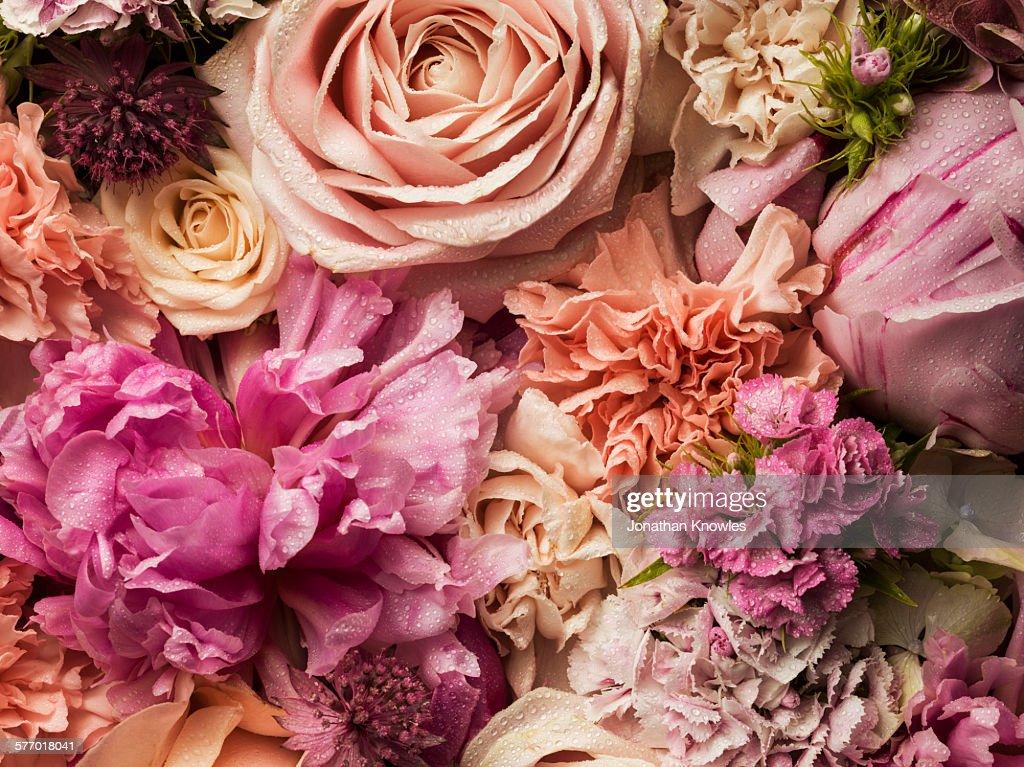 Full frame floral arrangement with dew : Foto de stock