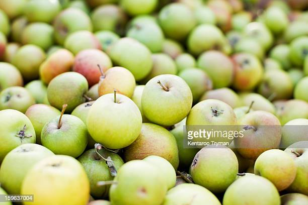 Full frame image of green apples