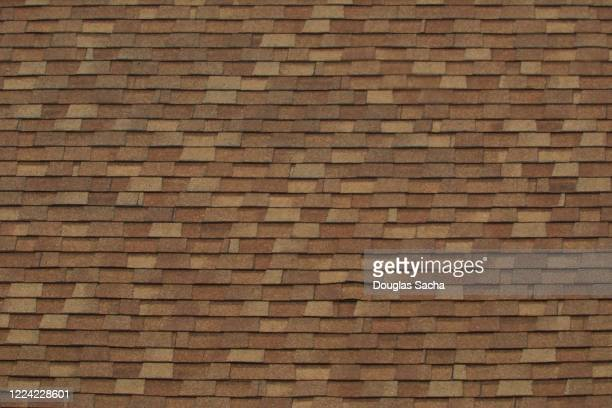 full frame of a asphalt shingle roof - herpes zoster foto e immagini stock
