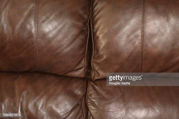Full Frame Of A Plush Leather Sofa