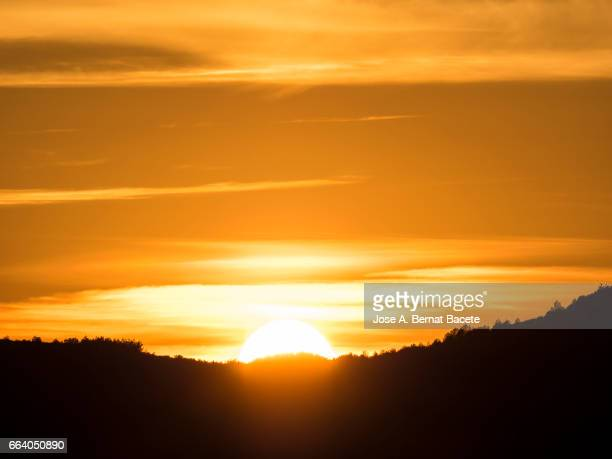 full frame of a sunset sun with high between the mountains with the silhouettes of the trees. - arbusto stock pictures, royalty-free photos & images
